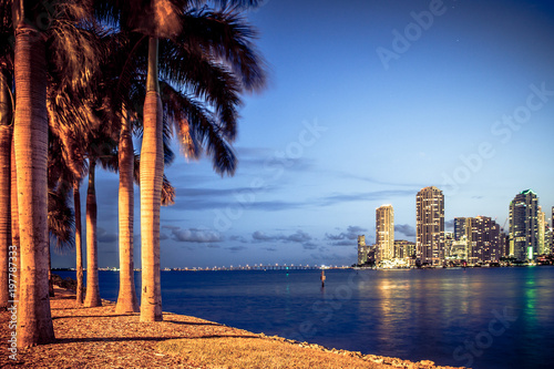 Poster Lieux connus d Amérique Miami Florida at night with skyline buildings, bay and palm trees