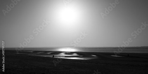 Photo Stands Sea Foehr / Germany: Couple with dog walking on the Frisian Wadden Sea coast near Utersum in the deep afternoon sun