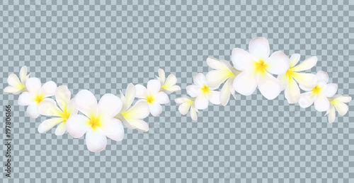 Vector Bali flowers border on transparency grid background