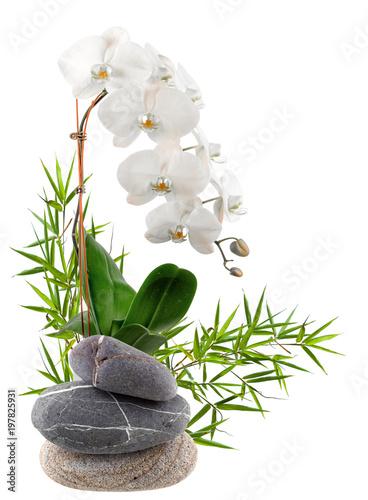 composition florale, bambou, orchidée, galets Canvas-taulu