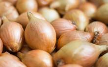 Fresh Onions, Onion Background...