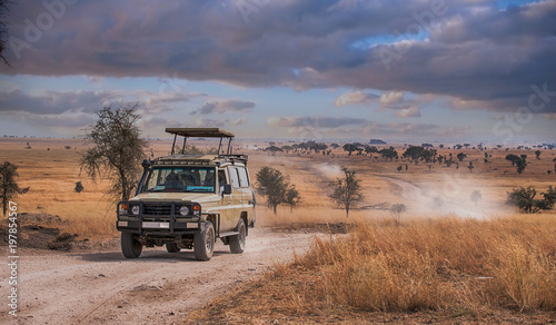 Game drive Safari in Serengeti national park,Tanzania