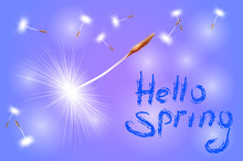 Inscription Hello Spring On A Blue Background With Flying Dandelion Seeds