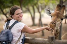 Girl Feeding The Giraffe