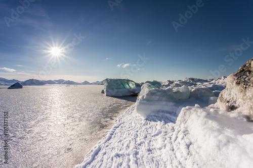 Obraz Wiosna na arktycznej plaży - fototapety do salonu