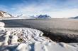 Wiosna na arktycznej plaży