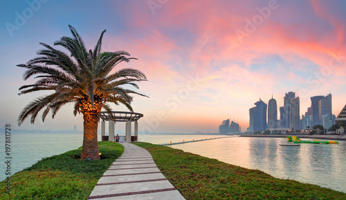 Photo  Doha with palm at dramatic sunset, Qatar
