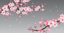 Cherry Blossom Collection , G...