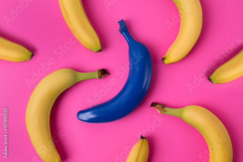 Top view of fresh yellow and blue bananas isolated on pink background Canvas Print