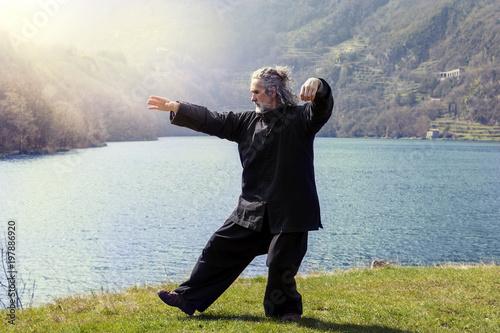 Garden Poster Martial arts mature man practicing Tai Chi discipline outdoors