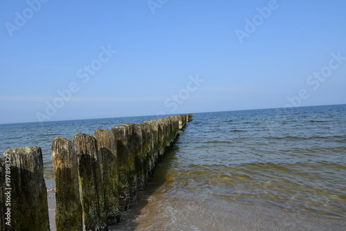 Foto op Aluminium Grijze traf. Spring impressions from Chalupy, a Kashubian seaside resort on the Hel peninsula, here you can see photos of the beautiful beach, Pomerania, Poland, Europe