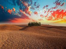 Toscana D'Autore, Immagini E Panorami Da Ricordare - Cipressi
