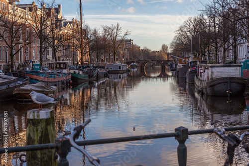 Photo  water canals in Amsterdam with a bridge in the middle and traditional architectu
