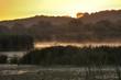 Erste Sonnenstrahlen erwärmen die Flussaue