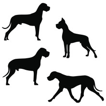 Set Of Icons Of Great Dane. Ve...