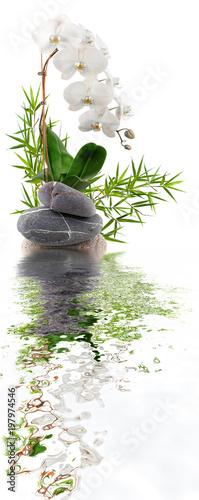Valokuvatapetti bambou, orchidée, galets avec reflets