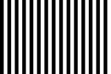 Pattern stripe seamless black and white. Vertical stripe abstract background vector. - 197974777