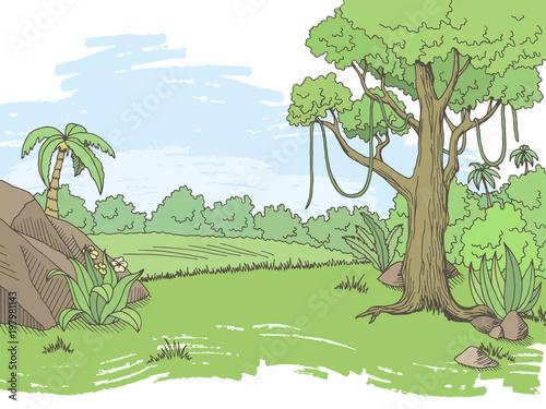 In de dag Pool Jungle forest graphic color landscape sketch illustration vector