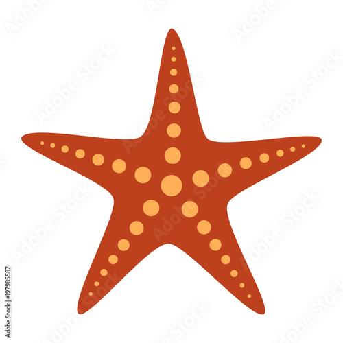 Common orange starfish or sea star fish marine life flat vector color icon for a Wallpaper Mural