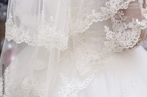 white bridal veil with embroidery Wallpaper Mural