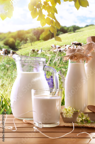 Fototapeta Glass containers filled with cow milk in a meadow vertical obraz