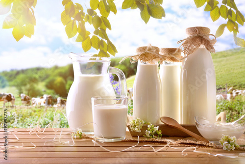 Glass containers filled with cow milk in a meadow Fototapete