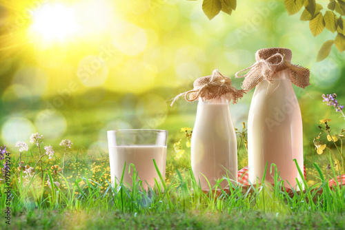 Foto  Organic milk on grass in a sunny meadow with flowers