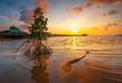 Golden sunset Taken Batam Island