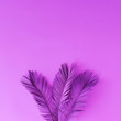 Leinwanddruck Bild - Tropical and palm leaves in vibrant bold purple color. Concept art. Minimal surrealism background.