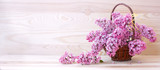 Spring lilac in basket isolated .
