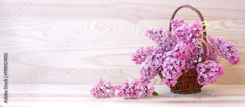 Staande foto Lilac Spring lilac in basket isolated .