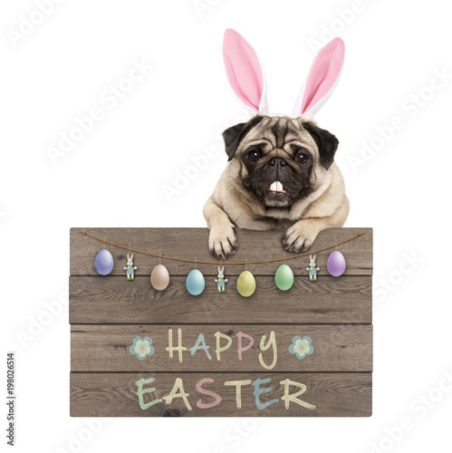 Easter Bunny Pug Dog Hanging On Wooden Sign With Text Happy Easter And Pastel Decoration Isolated On White Background Stock Photo Adobe Stock