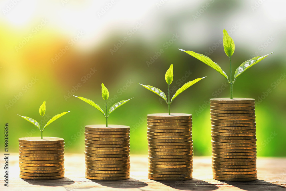 Fototapety, obrazy: money stack step with plant growing on coins. concept finance and accounting