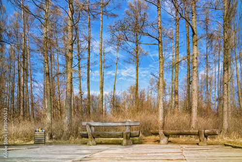 Fotobehang Zwavel geel Viewpoint with two wooden benches and trash box on sunny day