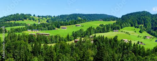 Poster Lime groen grüne Berglandschaft nördlich von Hittisau in Österreich Panorama