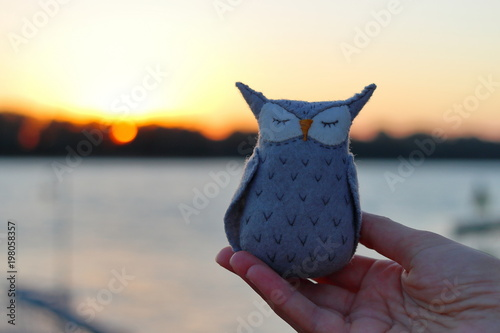Woman hand holding a fabric handmade textile small mini toy of owl against the sunset Fotobehang