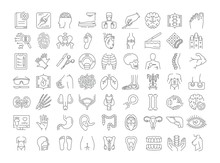 Vector Graphic Set. Icons In F...