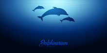 Underwater Background With Sun Rays And Silhouette Of Dolphin. Deep Ocean Banner. Color Vector Illustration