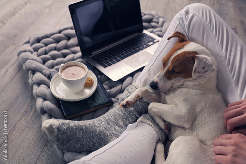 Carta da parati Woman in cozy home wear relaxing at home ,drinking cacao, using laptop