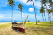 Palm and tropical beach. Beautiful nature landscape with Coconut Palm trees, traditional boat on white sandy beach
