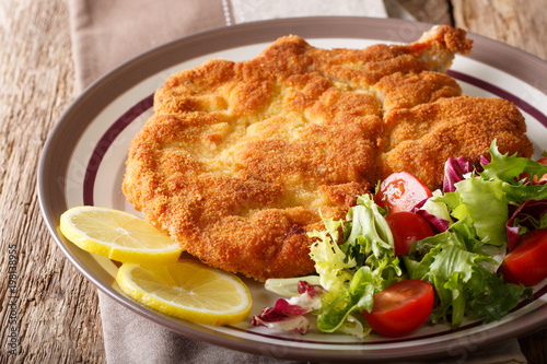Veal milanese (cotoletta alla milanese) with lemon and fresh vegetable salad close-up. horizontal