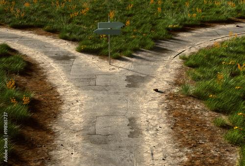 Weg mit Abzweigung Tapéta, Fotótapéta