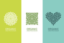 Logo Or Label Concept With Green Leaves In Circle, Square And Heart Shape. Organic Eco Product Design Elements