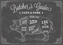 Vector Cuts Of Pork Chalk Illustration