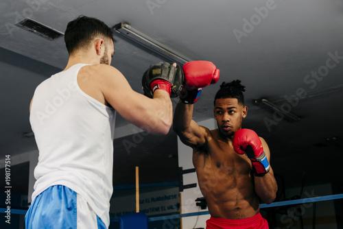 Muscular multiracial men training and boxing