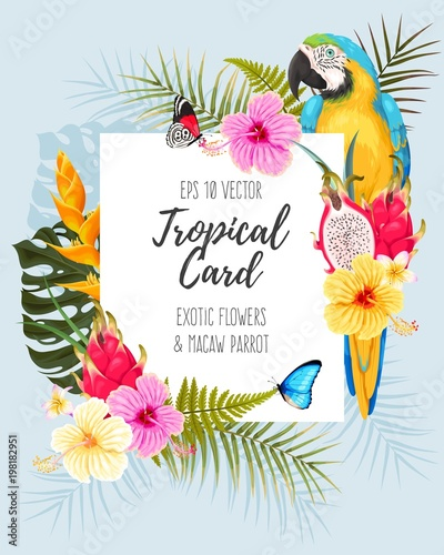 Fotografia, Obraz  Vector card with macaw and flowers
