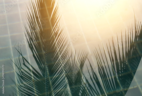 Foto op Plexiglas Historisch geb. Sunset on the pool, coconut shade reflecting on swimming water surface with sunset light, summer concept