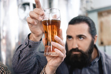 Bearded Man Looks At Transparency Of Beer In Glass. Brewer Is Studying Density Of Beer In Glass.