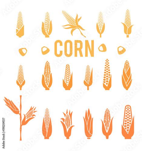 Fotografia  Corn icons. Popcorn silhouette.