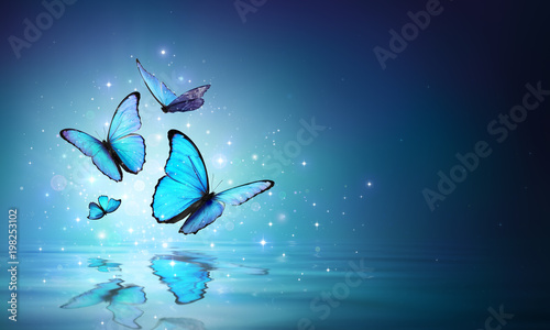 Foto op Plexiglas Vlinder Fairy Butterflies On Water